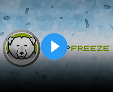 <p>How Deep Freeze works</p>