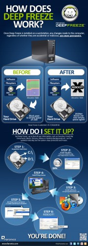 How Does Deep Freeze Work? [Infographic]