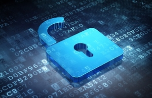 Protect your IT assets with application whitelisting software