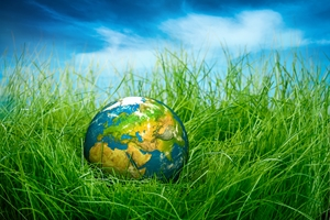5 ways to go green for Earth Day